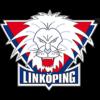 linkoping